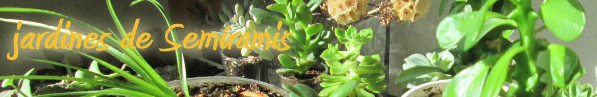 blogambiental